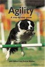 Agility by Patrick Holden